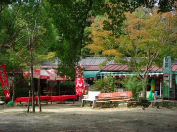 丸山茶店.jpg